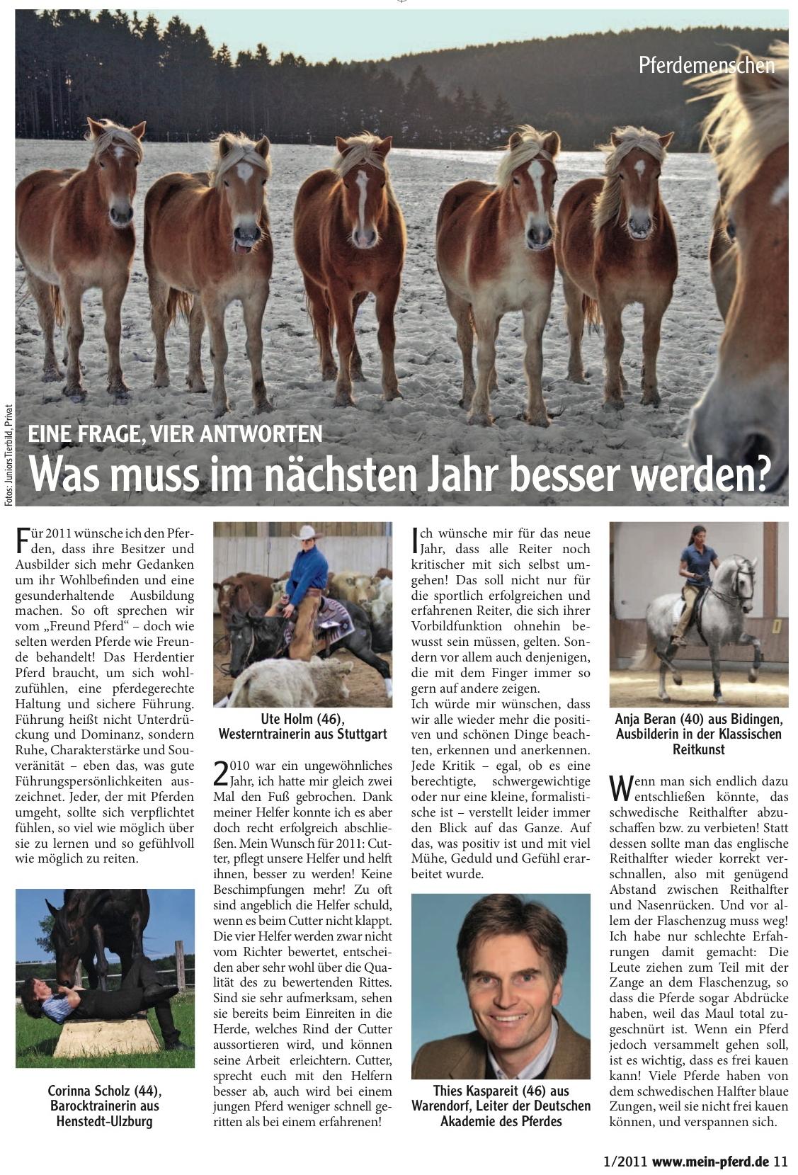 01-2011 Mein Pferd a