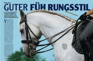 02-2010 Mein Pferd 1