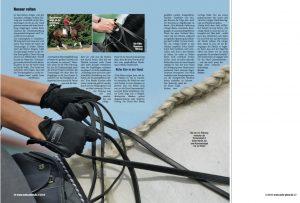 02-2010 Mein Pferd 3