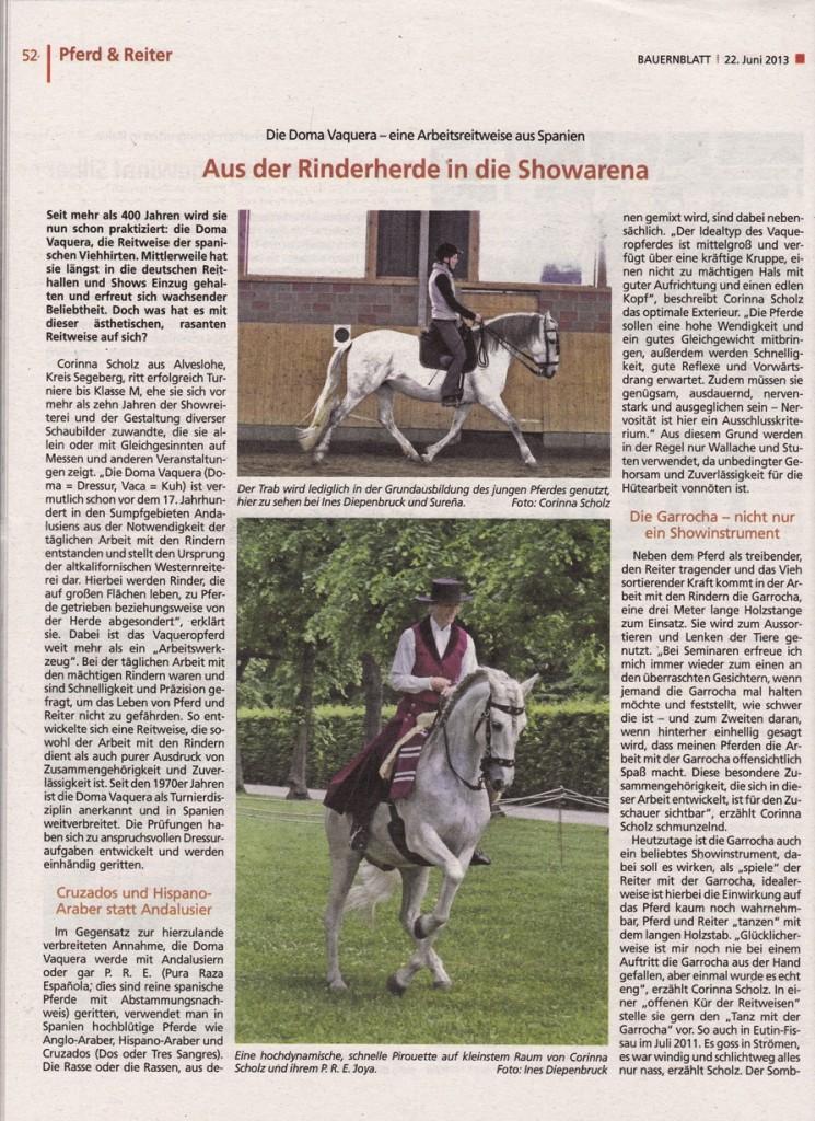 06-2013_bauernblatt_1a