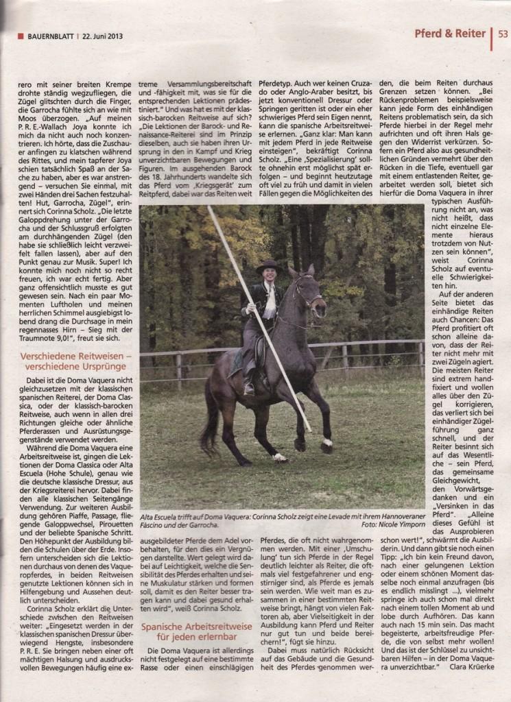 06-2013_bauernblatt_2a