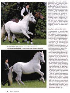 08-2007 Pegasus d