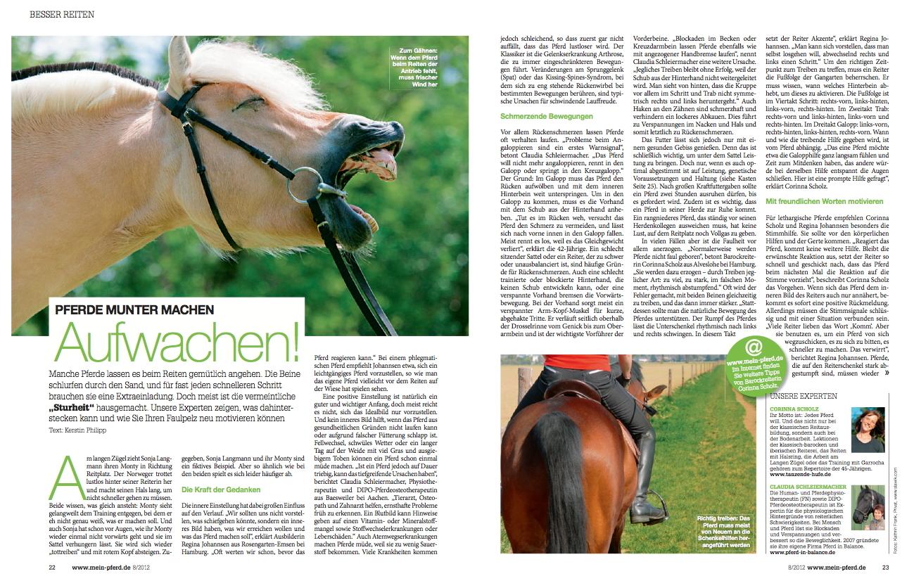 08-2012 Mein Pferd 1