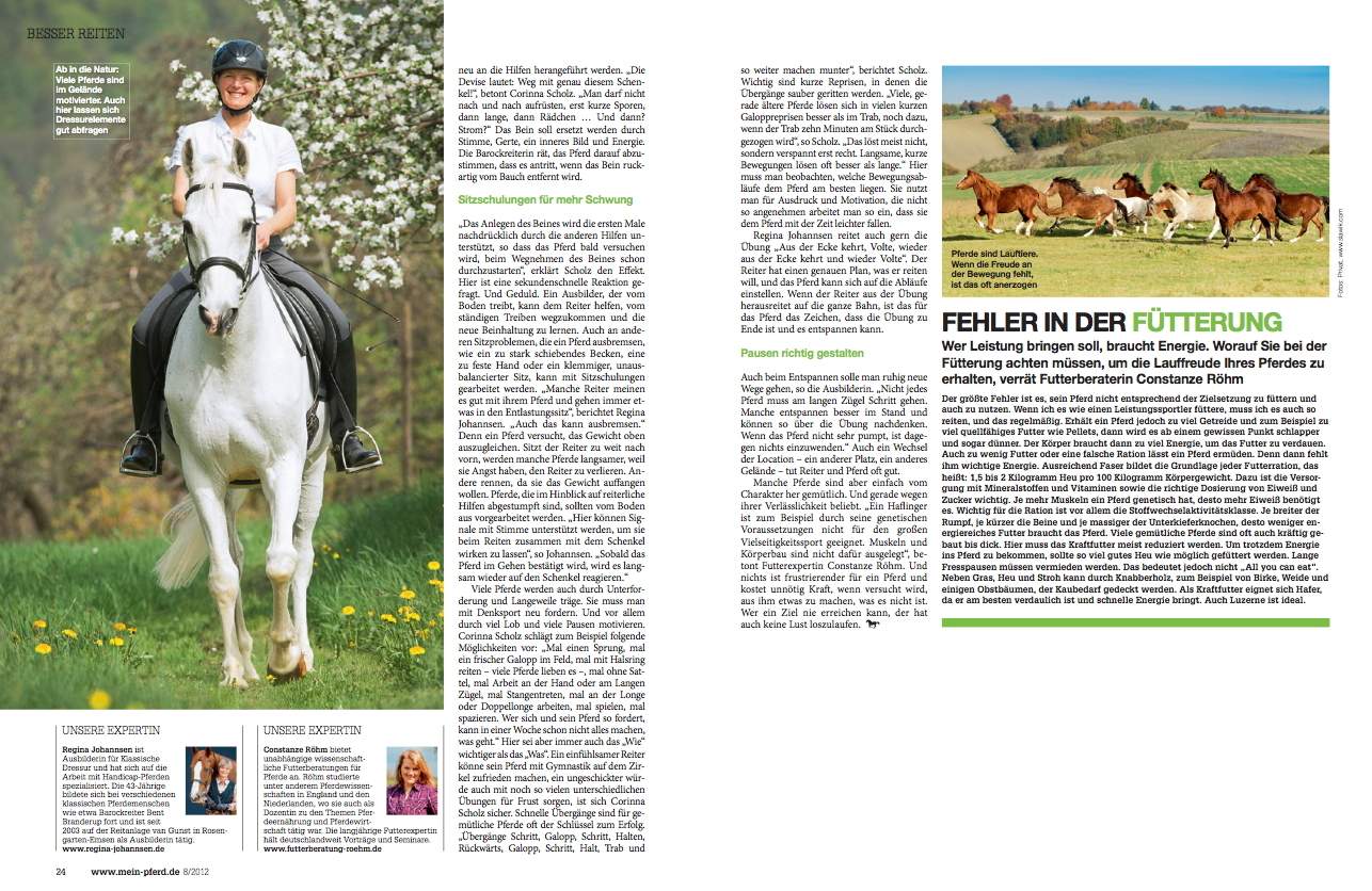 08-2012 Mein Pferd 2