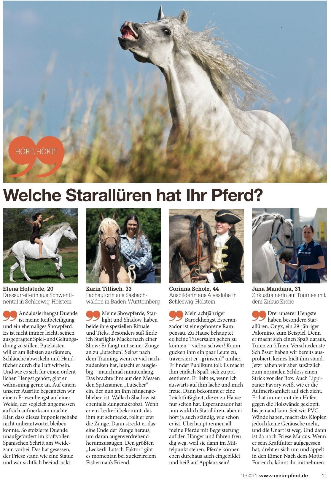 10-2011 Mein Pferd