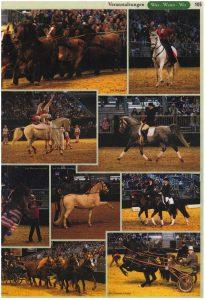 11-2006 Pferdeanzeiger 2