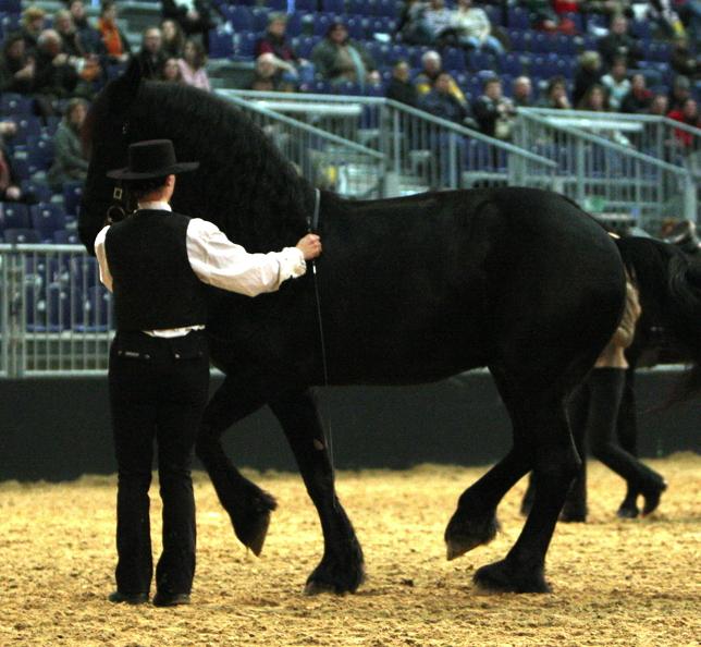 pferde und jagd hannover