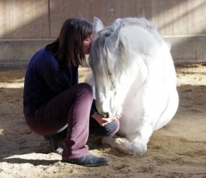 was für ein Pferd...