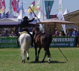 Zwei Pferde unter der Garrocha