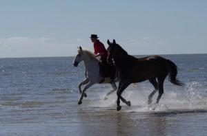 Spaß an (in) der Nordsee - Fàscino läuft frei mit